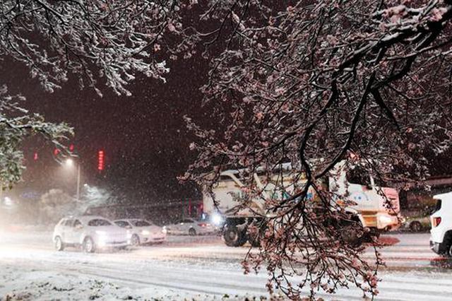 多图预警!一起来看2021郑州第一场雪
