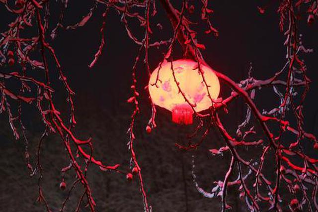 雪打灯!郑州春雷送来大雪 夜间街头呈现难得雪景