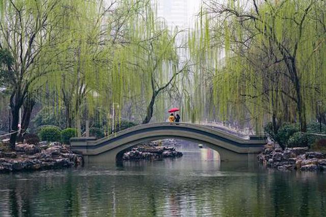 郑州:雨中赏春(图)