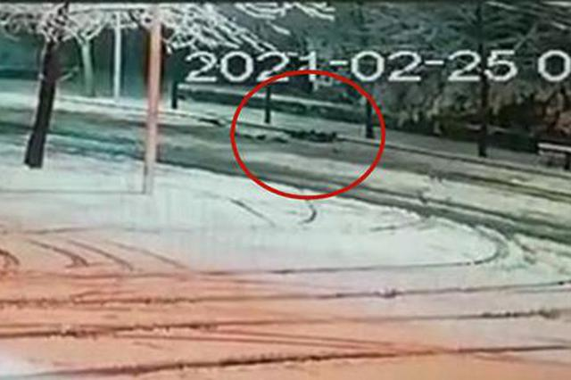 行人雪中被撞重伤昏迷 监控拍下司机令人愤怒一幕!