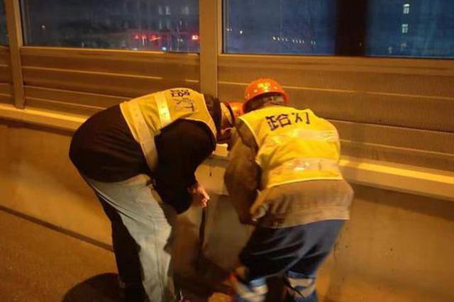 郑州启动路灯设施综合整治行动 市民可打电话反映