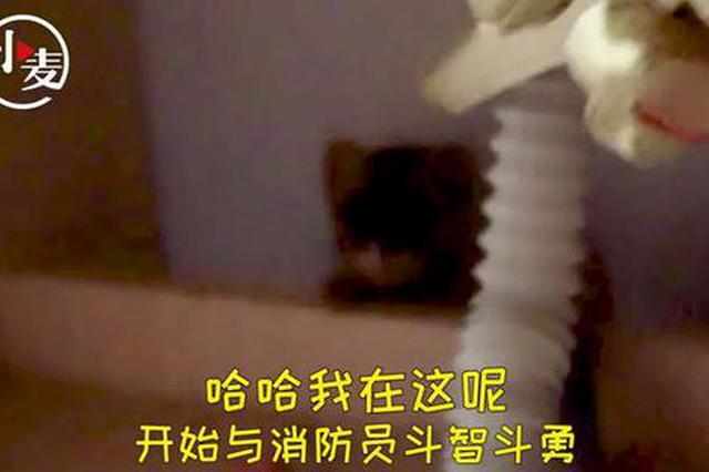鄭州女子住酒店忽聞浴室傳來敲玻璃聲 看清后嚇得立馬報警
