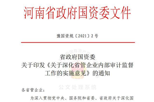 河南省管企业审计新规:对混改、对赌式并购、高风险金融重点
