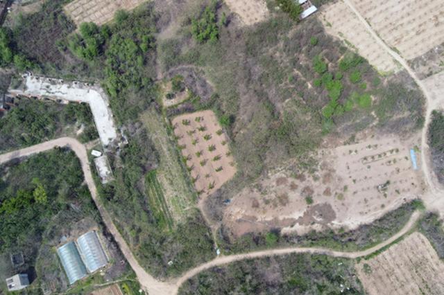 领跑全国!郑州15个项目入选全国十大考古新发现
