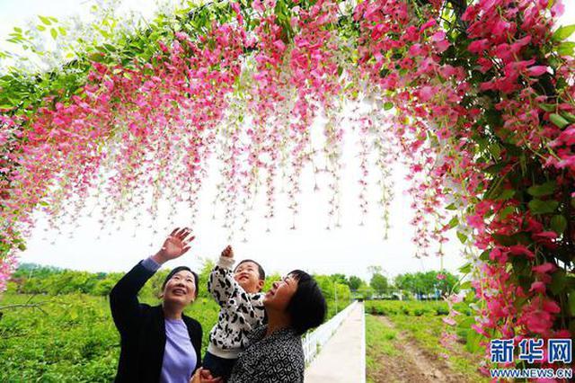 许昌:农旅融合助力乡村振兴(图)