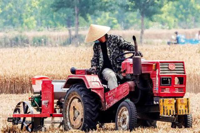 河南滑县:不误农时 抢播玉米(组图)