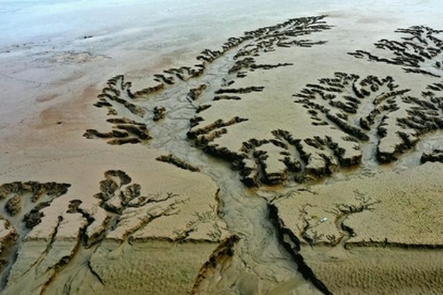 """震撼!黄河滩上的巨幅""""浮雕版画"""""""