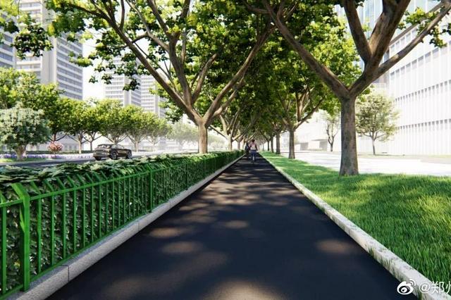 郑州金水路提升改造 下一步怎么改?你想知道的在这里!