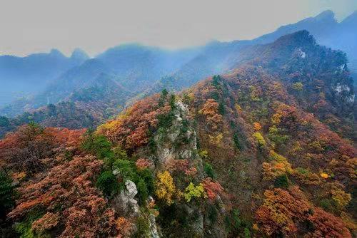 露重万彩 清风剪成 2018尧山红叶节将于重阳节开幕 多重优惠来袭