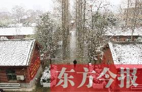纷纷扬扬的雪花飘洒在卢氏县委大院