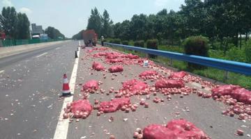 大广高速货车相撞 洋葱头洒满路面