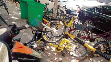 郑州共享单车乱象 影响交通