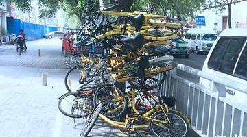 """郑州20辆共享单车被""""叠罗汉"""""""