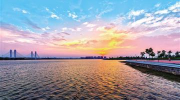 天凉好个秋!郑州龙湖赏秋正当时