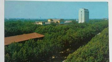 明信片里的老郑州 讲述「绿城」的来源