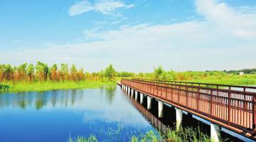郑州这10个森林(湿地)公园国庆正式开园