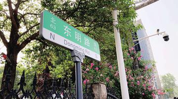 郑州市6000余块路名牌开始换新