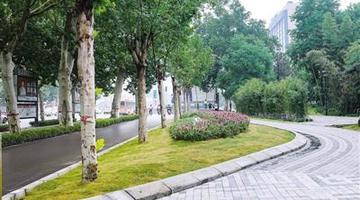 拆围后的郑州紫荆山公园亮相