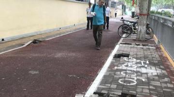 郑州街头线杆一夜拔光 留下十多个深洞