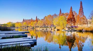 河南高校里竟然藏着这么多美丽的湖
