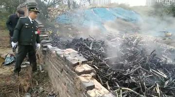 郑州几十辆共享单车和废旧汽车燃起大火