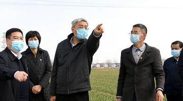 尹弘:太阳城申博官方网登入 ,发展现代农业 推动高质量发展