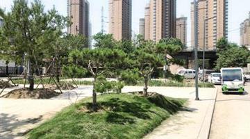 郑州多出一个体育公园 环境新模样