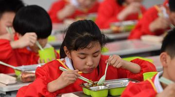 郑州:申博现金赌场登入,校园里的美味午餐