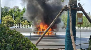 高温自燃!郑州一私家车被大火吞噬