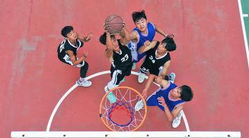 平顶山青少年球类运动展活力