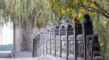 探幽郑州惠济桥 寻找隋唐大运河遗迹