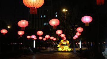 郑州公园大红灯笼挂起来了