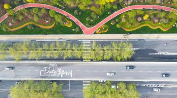 郑州:最美的风景就在路上