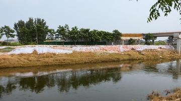 新乡:主要防洪河道水位全部回落