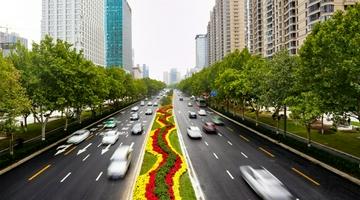 郑州:提升改造后金水路美爆了