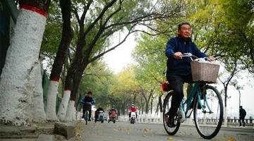 河南开封:大风降温天气寒
