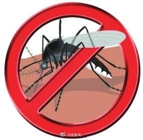 郑州疾控提醒大雨后10天注意防蚊
