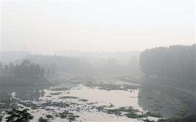12日的西流湖被雾霾笼罩 记者 马健 图