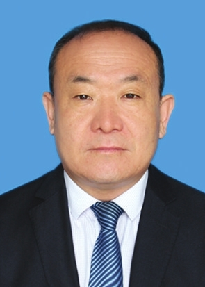 2020河南省创新奖获得者事迹材料---王丙臣