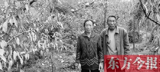 □东方今报·猛犸新闻记者 李国营见习记者崔峰/文图