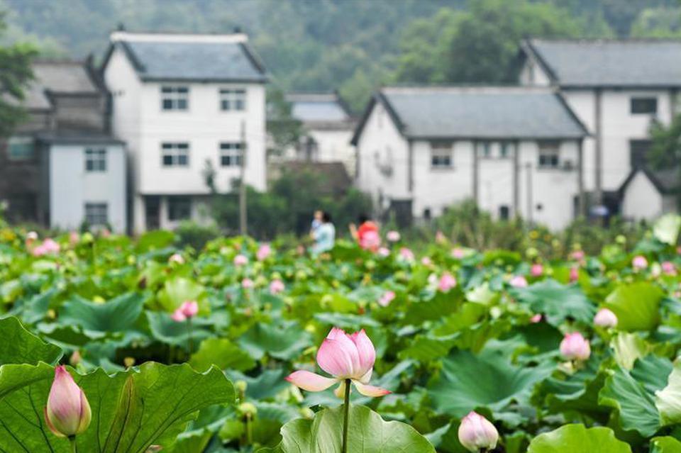 河南藏着绝美景色的8处原生态古村落