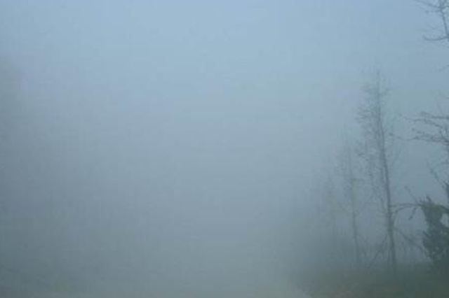 提醒!郑州今有大雾出没 出行请注意