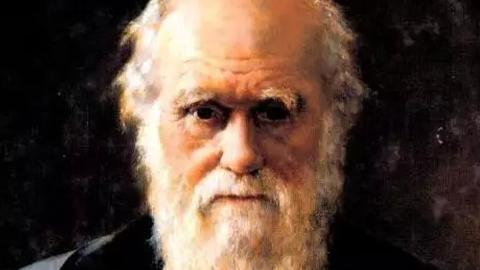 达尔文未解的谜!世上第一朵花长啥样