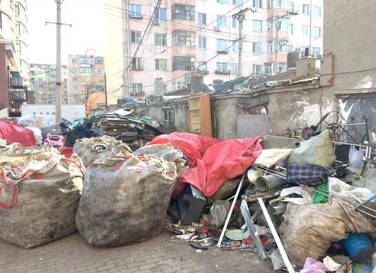 哈市泰山路废品收购站扎堆 多家没有手续