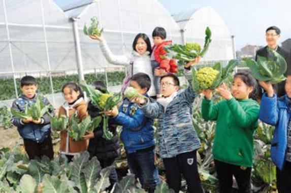 哈尔滨农科园开园 1100公斤鳇鱼濒危中华鲟都能看到