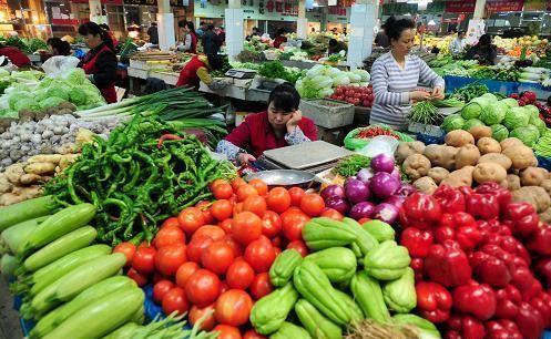个别涨幅较大 哈尔滨主要蔬菜品种价格稳定供应充足