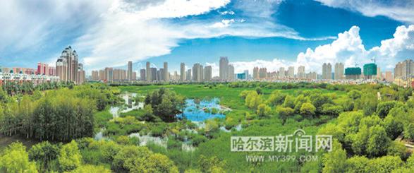 群力国家城市湿地公园内碧波荡漾 呈现迷人湿地景色