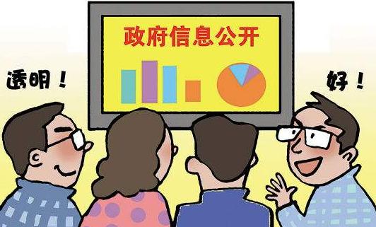 去年大庆市政府法制办共公开政府信息294条