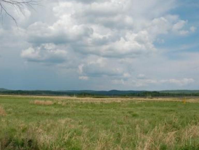 黑龙江现有草原207万公顷 草原生态状况呈现逐步好转
