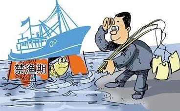 25日起松花江哈尔滨段全面禁渔 为期47天